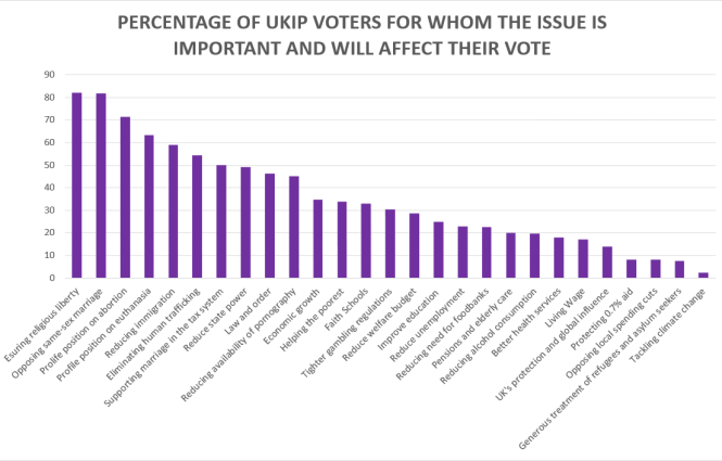 UKIP issue importance